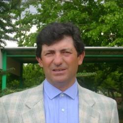 Cerbino Cosimo Damiano